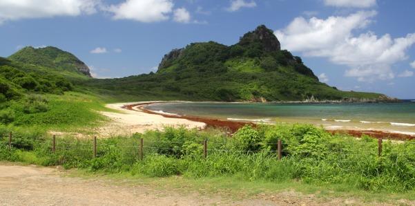 Praia do Sueste tomada por algas avermelhadas