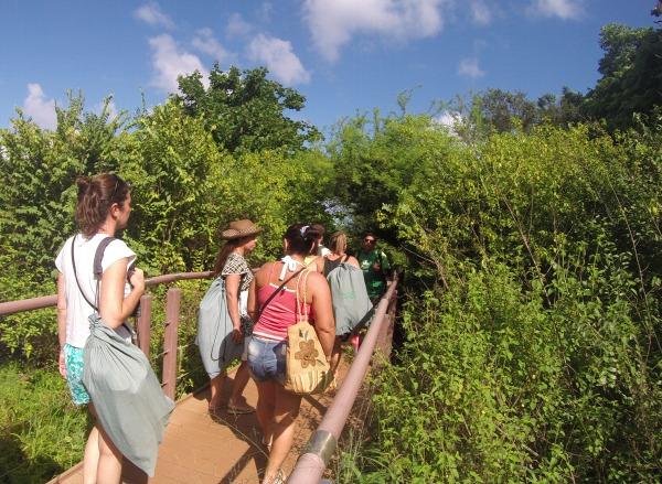 Primeira parte da trilha para a Praia do Sancho
