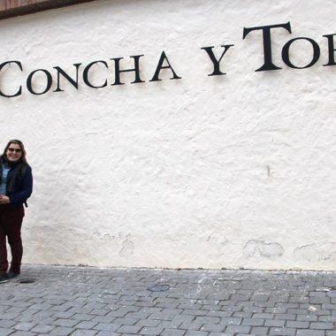 Na entrada da Concha y Toro