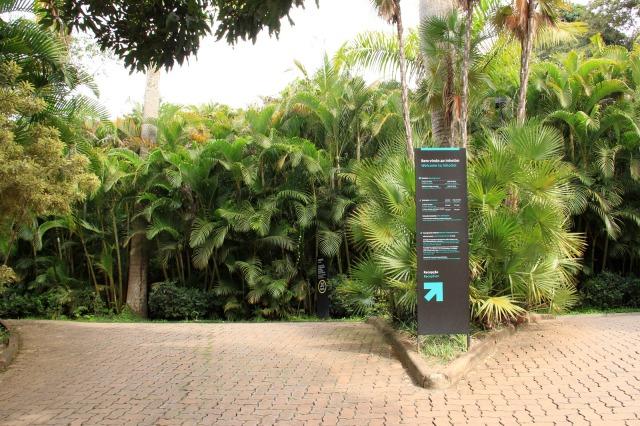 A entrada do Inhotim