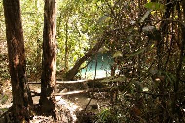 """Primeira vista da cachoeira """"Barbarinha"""""""