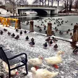 West Hudson Park, em Kearny